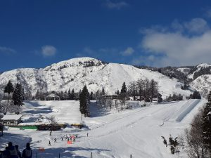 上越国際スキー場、ホテルグリーンプラザ上越